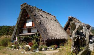 Strohdächer-Häuser in Shirakawago
