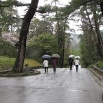 Izumo_Taisha_Way to the gods